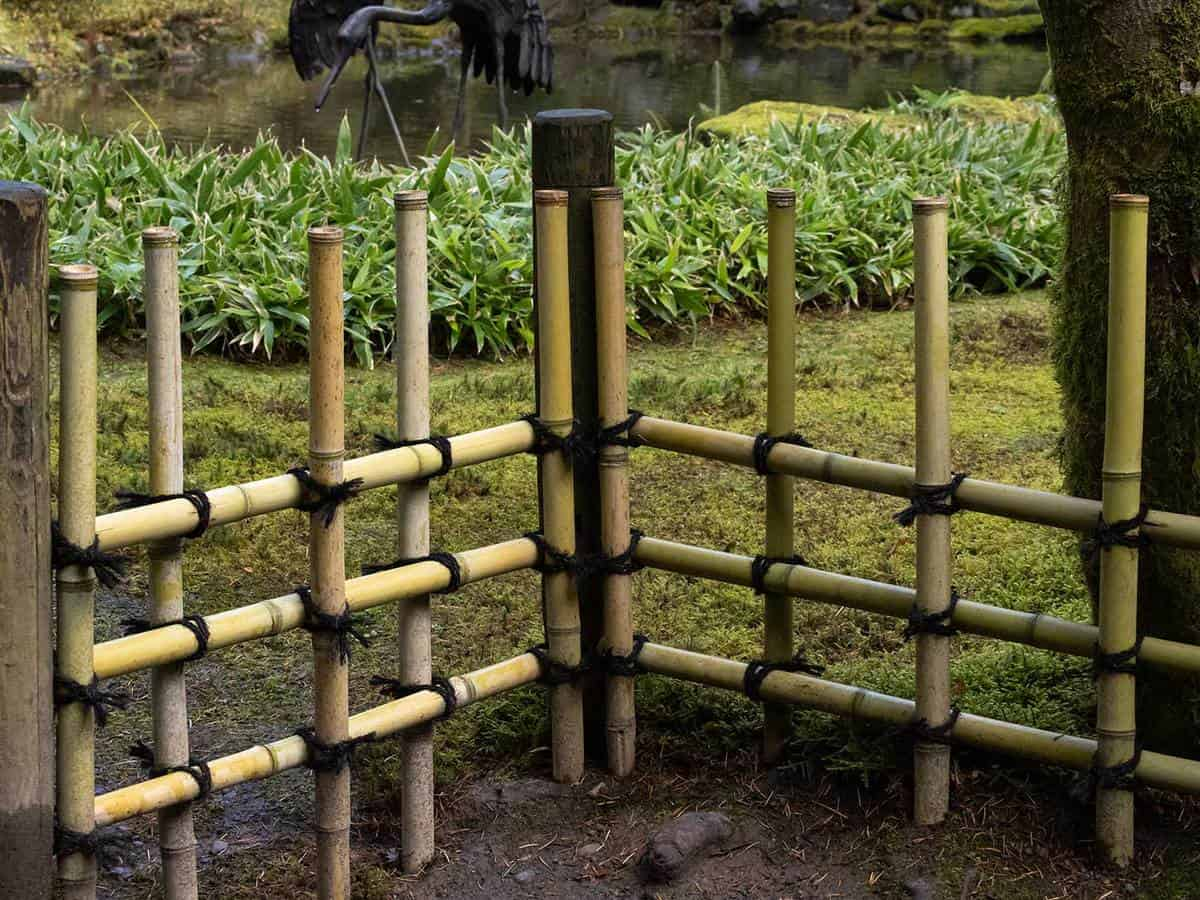 Bamboo garden border to separate walkway and plant pond area