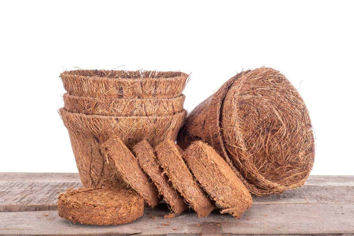 Coir,-coconut-fibre,-plant-pots-and-growing-discs-against-white.-Environmentally-friendly-peat-free-spring-gardening.