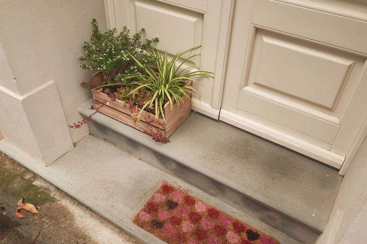 Decorative plants in a wooden crate on a house entrance