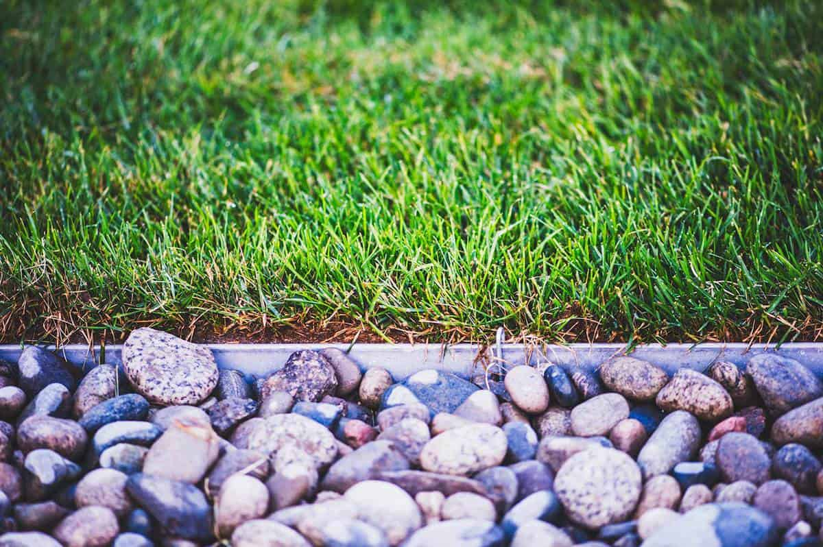 Freshly laid sod next to stone border