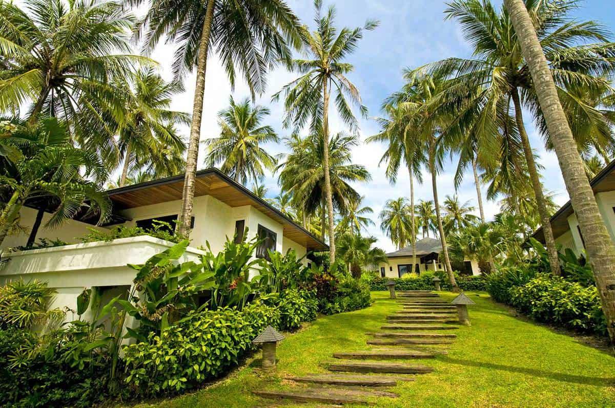 35 Palm Tree Garden Ideas - Garden Tabs