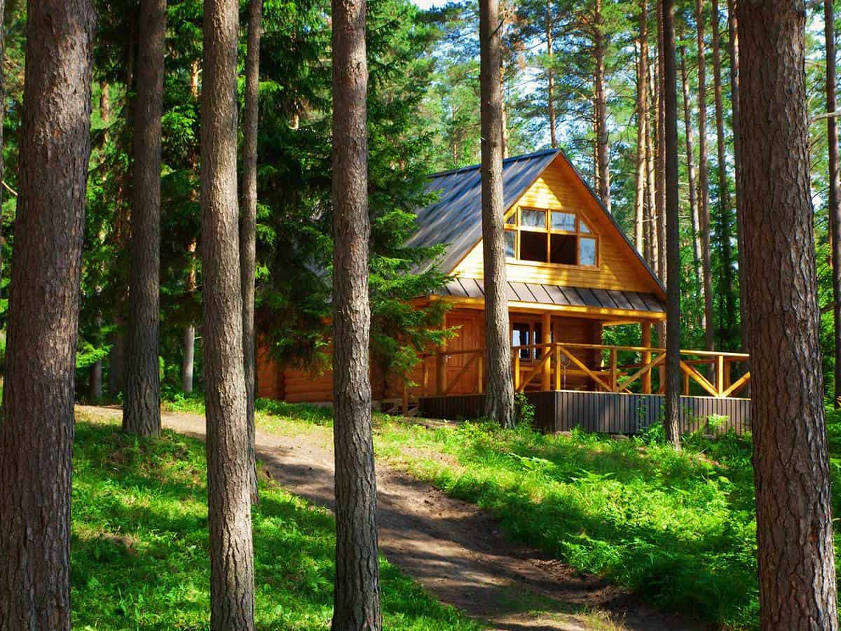 Rustic log house on the woods