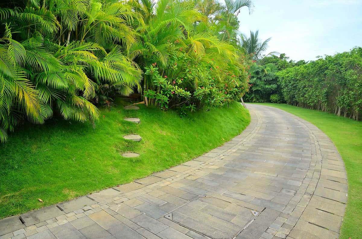 Stone pathway into a tropical garden