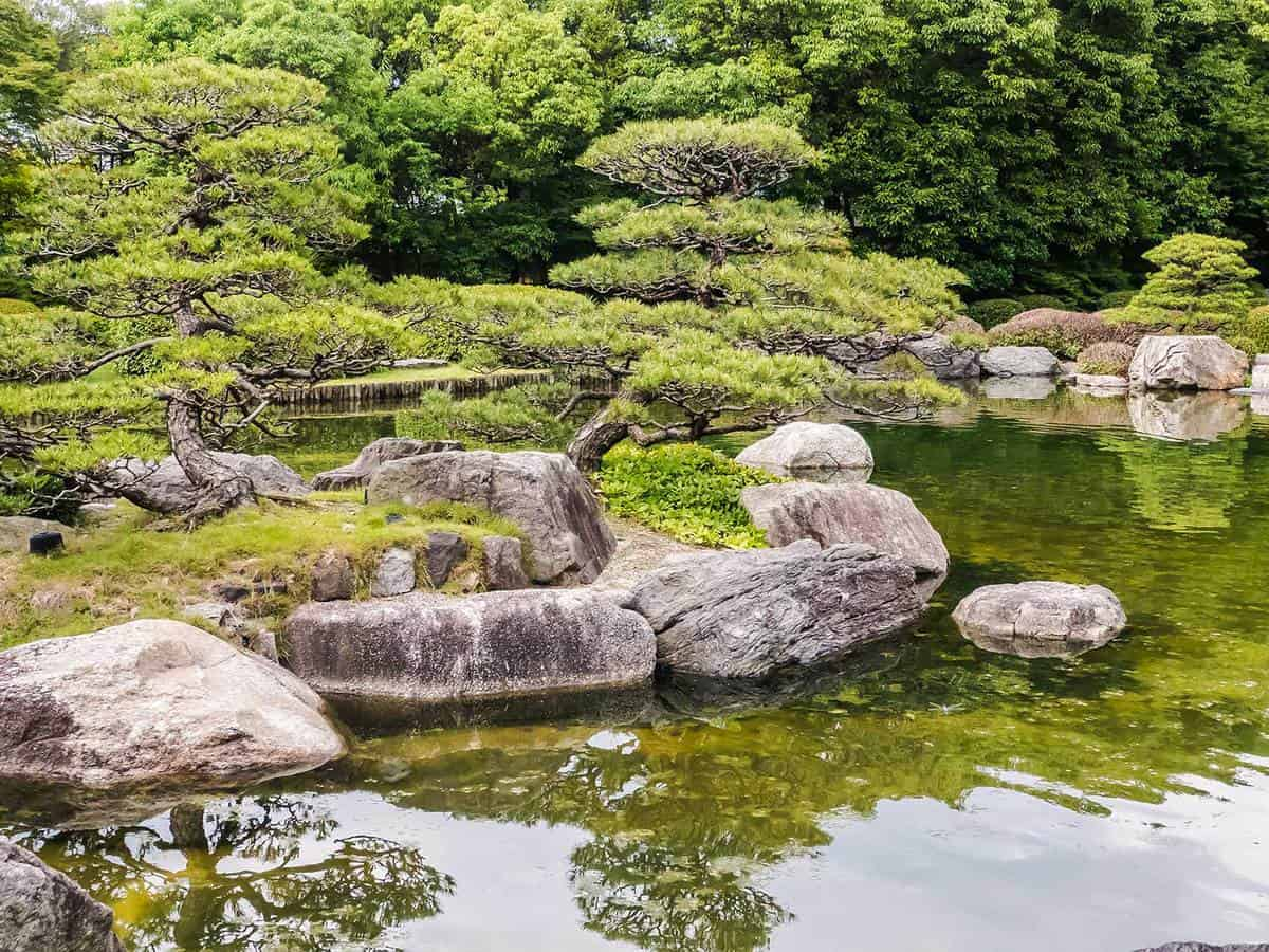 Traditional japan zen garden with fish pond