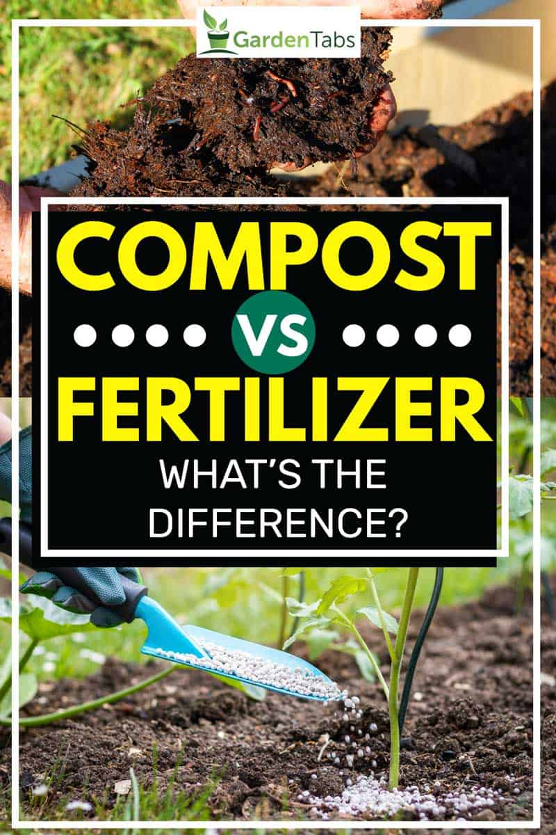 Compost vs. Fertilizer - What's The Difference?