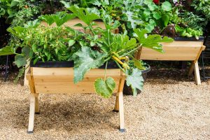 13 Awesome Above-Ground Planter Boxes