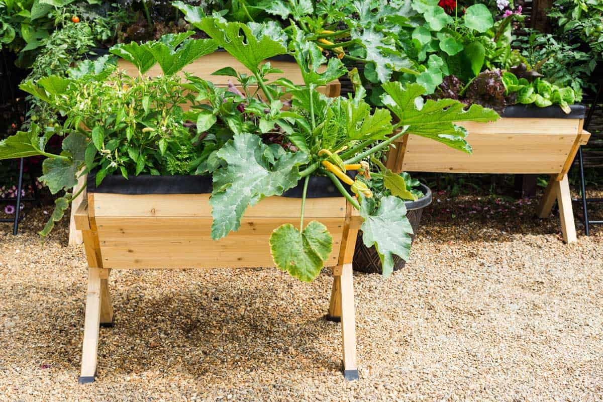 13 Awesome Above Ground Planter Boxes Garden Tabs