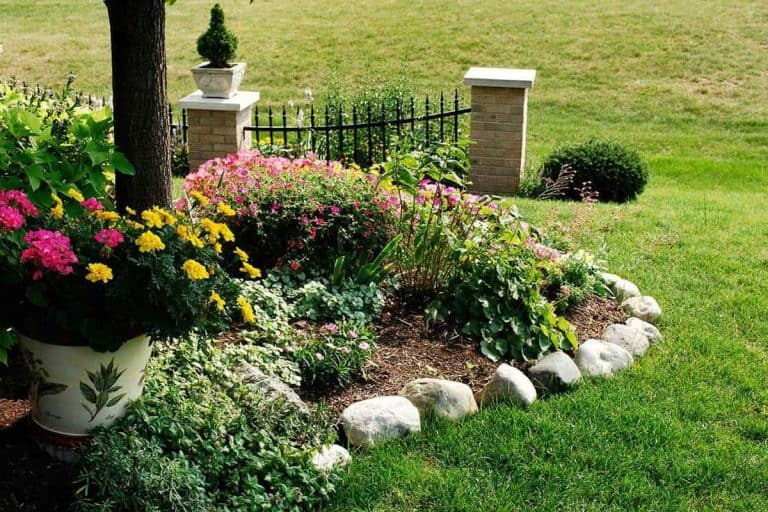 8 Awesome No-Dig Garden Edging Ideas You Should Check Out