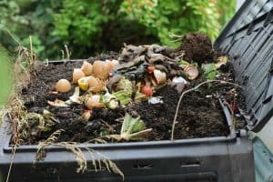 How Much Does a Composter Cost?
