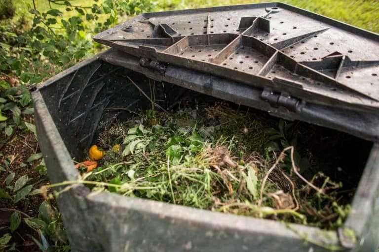 Where Is the Best Place to Put Your Compost?