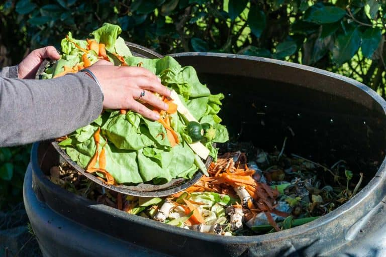 How Long Does Compost Last?
