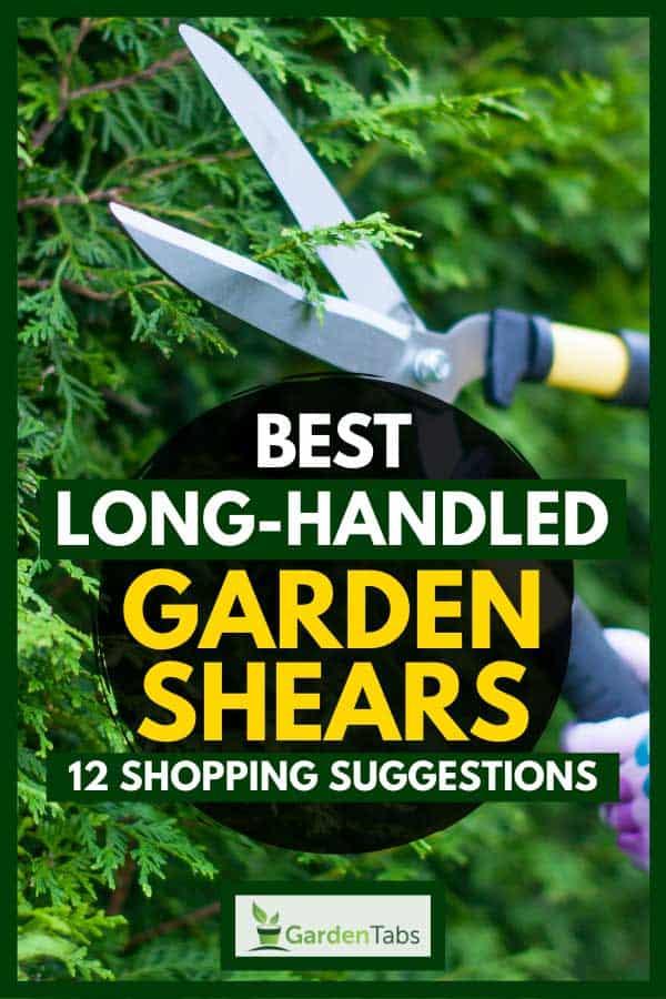 Florist woman working in the garden cutting shrubs with long-handled garden shears