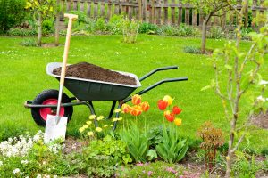 When to Add Compost to Your Garden?