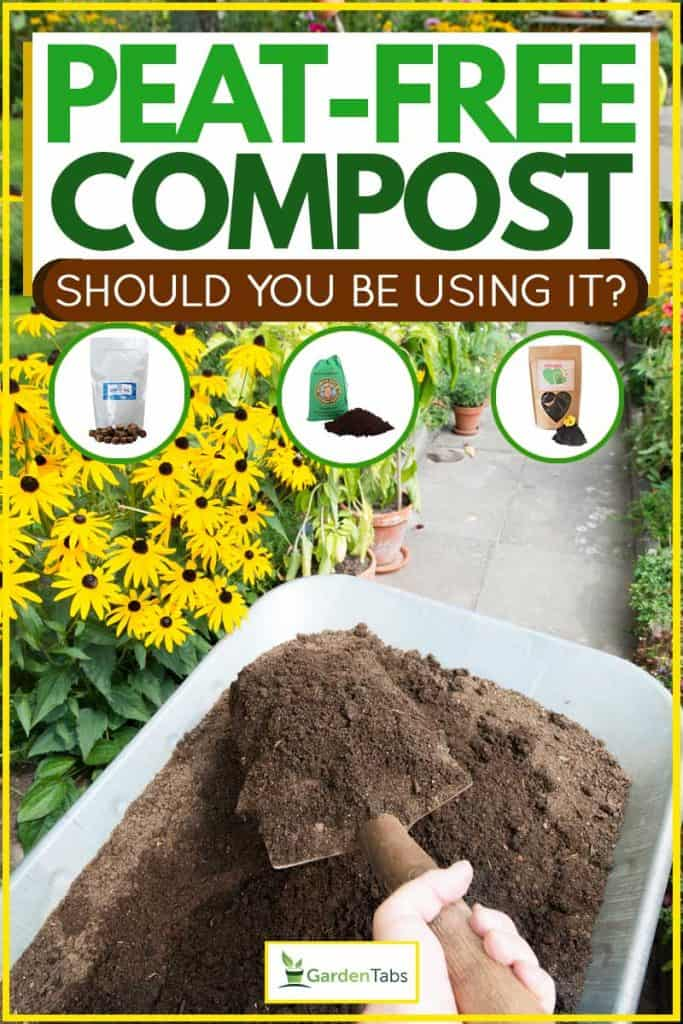 Gardener picking up compost soil and applying it to flowerbed
