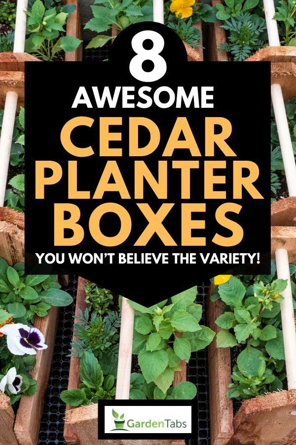 Planter boxes made of wood, 8 Awesome Cedar Planter Boxes [You won't believe the variety!]