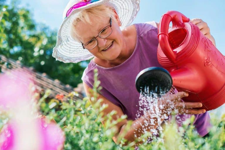 16 Awesome Gifts for Elderly Gardeners