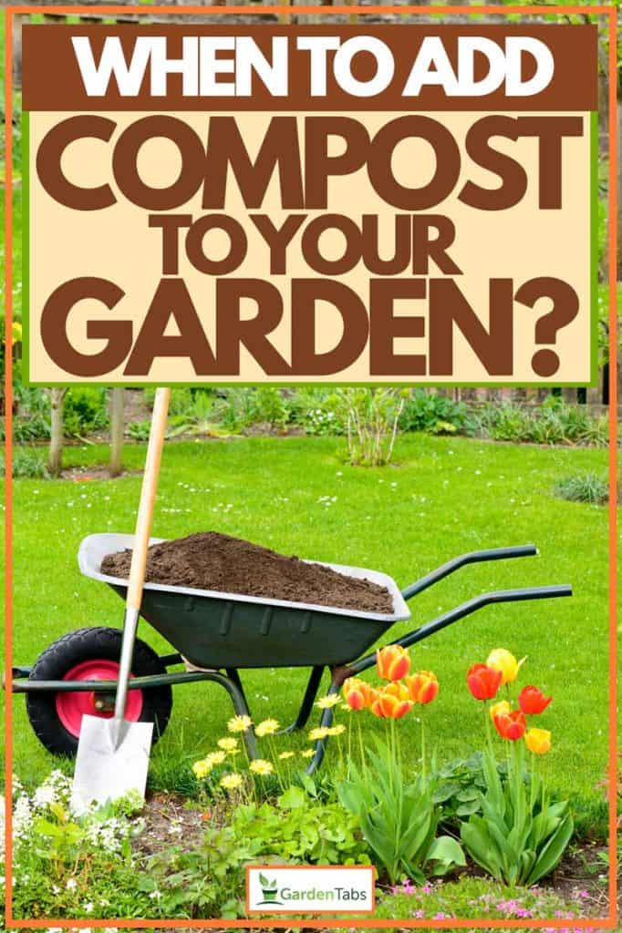 Wheel barrow carrying compost for garden and with a shovel beside it