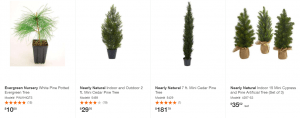 Home Depot website product page for pine trees