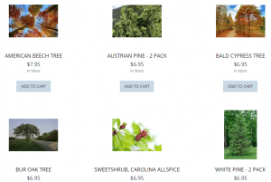 Fox River Valley Nursery website product page for pine trees