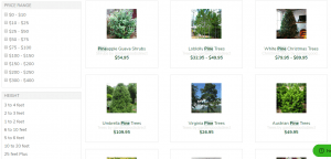 Gardens Goods Nursery website product page for pine trees
