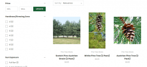 The Tree Store website product page for pine trees