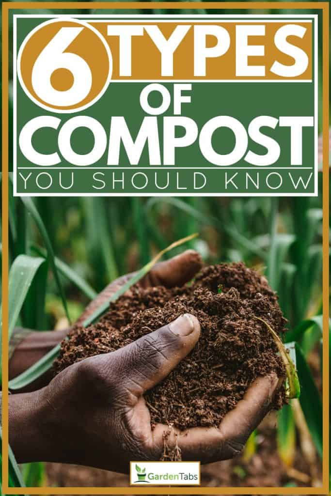 Man holding compost soil for planting, 6 Types of Compost You Should Know