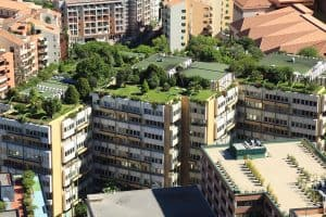What Are The Common Problems With Rooftop Gardens?
