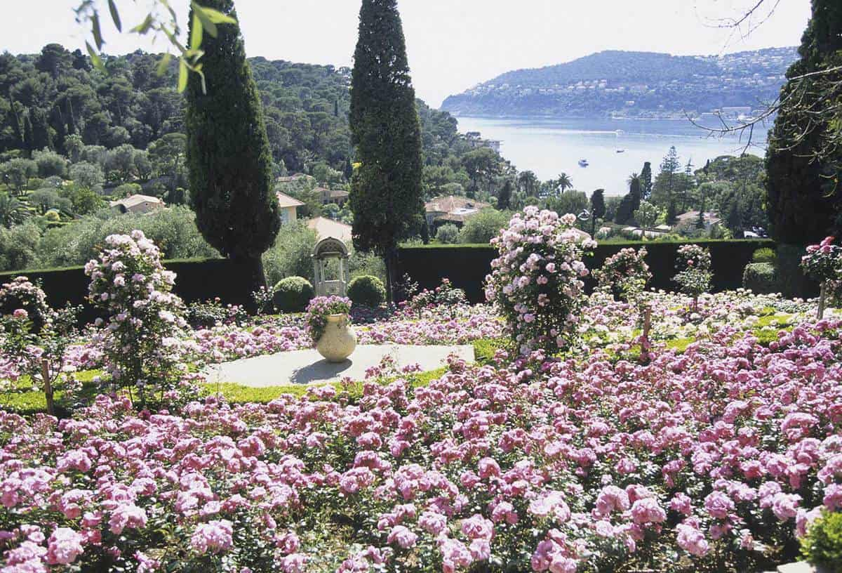 Rothschild House rose garden