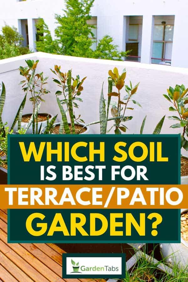 Urban terrace garden with wooden floor and plants, Which Soil Is Best For Terrace/Patio Garden?