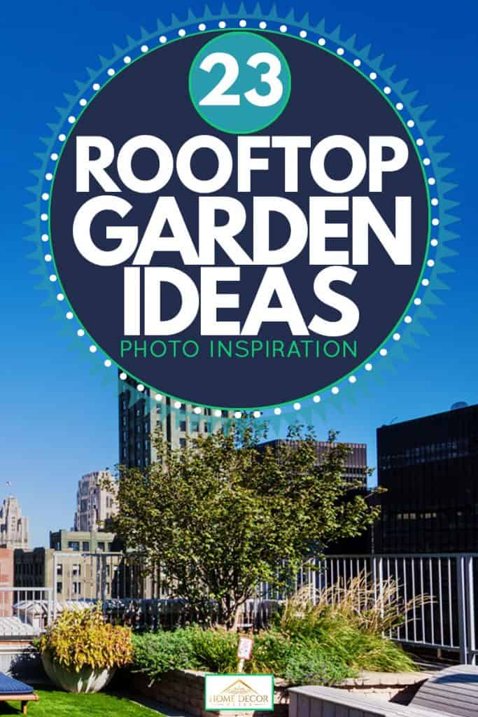 Roofing garden in the loop Downtown, Chicago, 23 Rooftop Garden Ideas [Photo Inspiration]