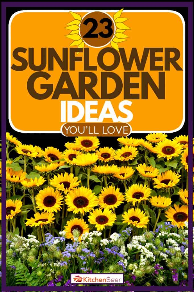 Garden filled with sunflowers and other sorts of flowers, 23 Sunflower Garden Ideas You'll Love