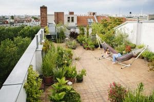 What Are The Benefits Of A Rooftop Garden?