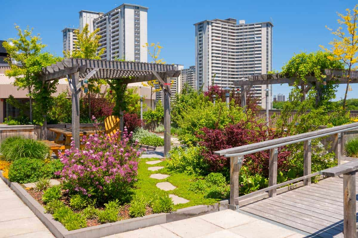 Roof Garden on the top of an apartment building, How Do You Protect a Terrace, Patio or Roof Garden From Rain?