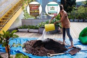 How Do You Prepare Soil For A Roof Garden?