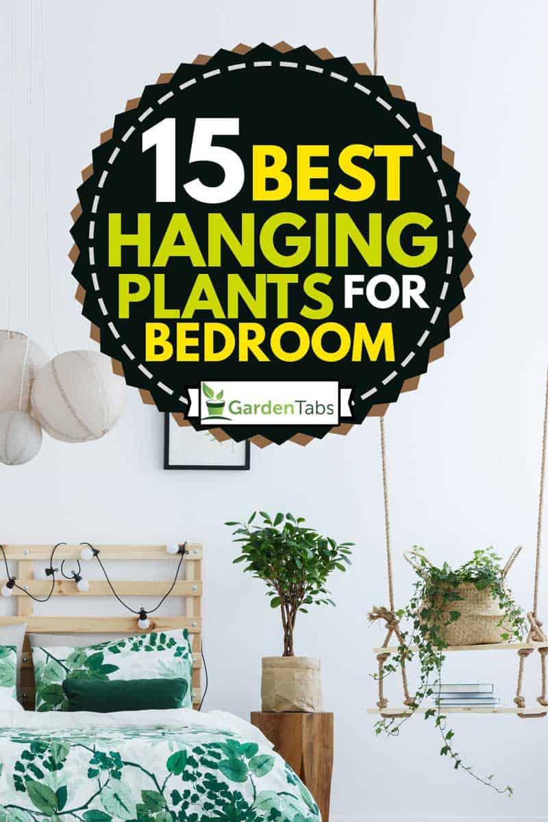 garden theme bedroom with hanging plants, 15 Best Hanging Plants For Bedroom