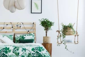 15 Best Hanging Plants For Bedroom