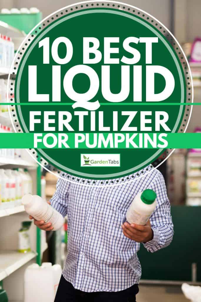 Farmer selecting liquid fertilizers, 10 Best Liquid Fertilizers for Pumpkins