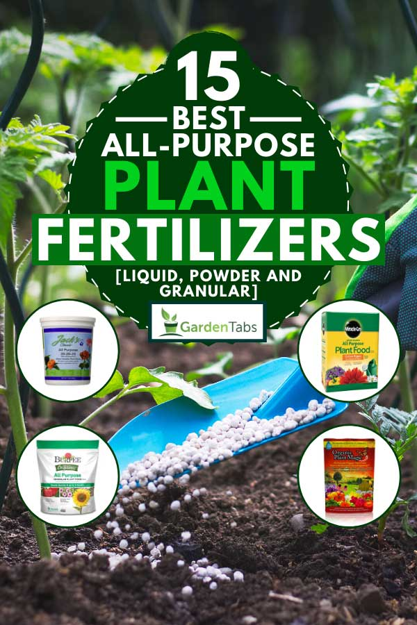 Collage of plant fertilizers with a farmer giving granulated fertilizer to young tomato plants on the background, 15 Best All-Purpose Plant Fertilizers [Liquid, Powder and Granular]