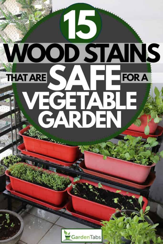 A vertical garden with vegetables inside a rectangular pot, 15 Wood Stains That Are Safe for a Vegetable Garden