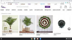 1-800 Flowers.com page showing palm trees for sale