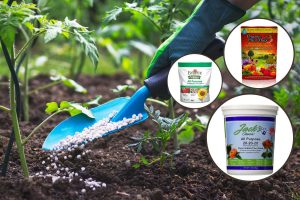 15 Best All-Purpose Plant Fertilizers [Liquid, Powder and Granular]