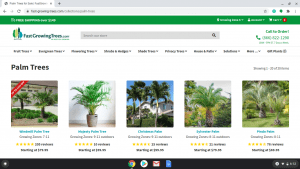 Fast Growing Trees page showing palm trees for sale