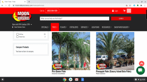 Moon Valley Nurseries page showing palm trees for sale