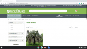 Nature Hills page showing palm trees for sale