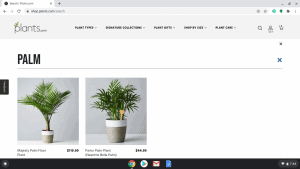 Plants.com page showing palm trees for sale