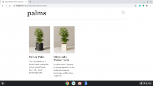 The Sill page showing palm trees for sale