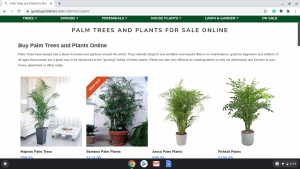 Woodies Garden Goods page showing palm trees for sale