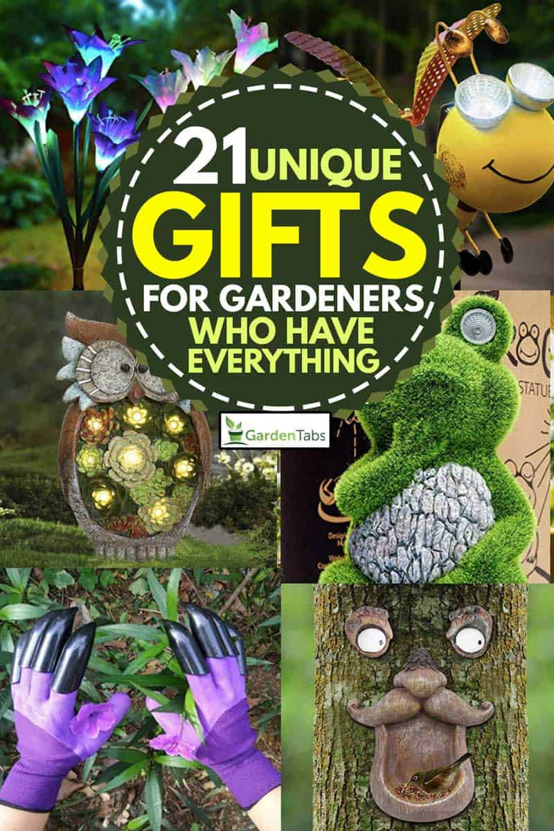A collage of unique gifts for gardeners, 21 Unique Gifts For Gardeners Who Have Everything