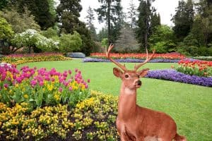 How To Stop Deer From Eating My Flowers? [5 Proven Tactics]