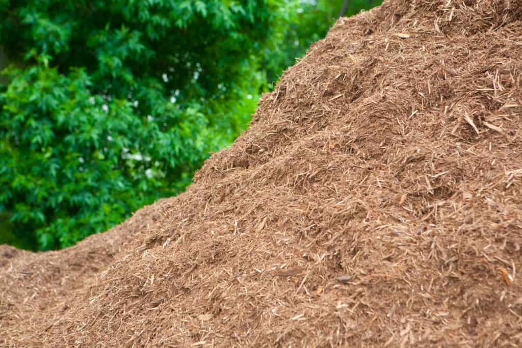 A premium pile of mulch perfect for your garden